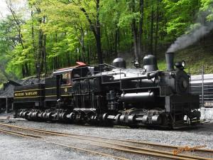 アメリカ型鉄道模型_shay